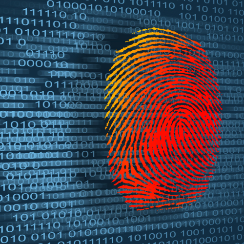 Preventing Tax Fraud and Identity Theft