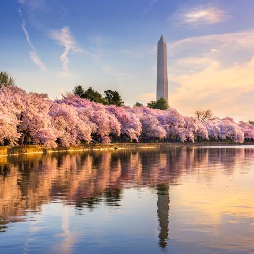 7 Best Budget-Friendly Spring Break Spots