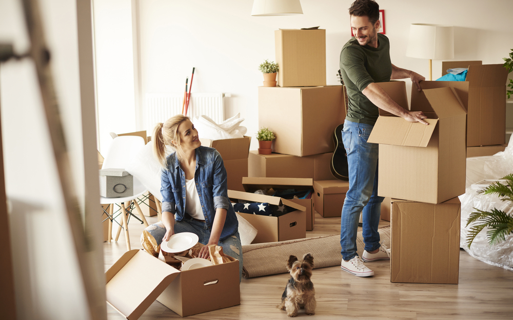 Apartment vs. House: Which is Right for You?