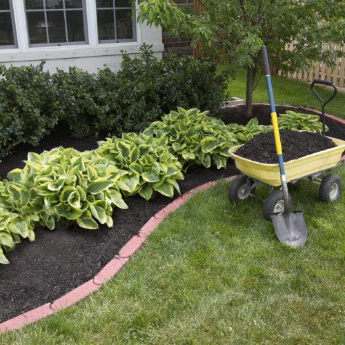 Spring Preparations for Your Home