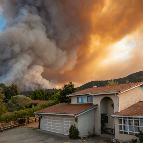 How to Help Prepare for a Wildfire