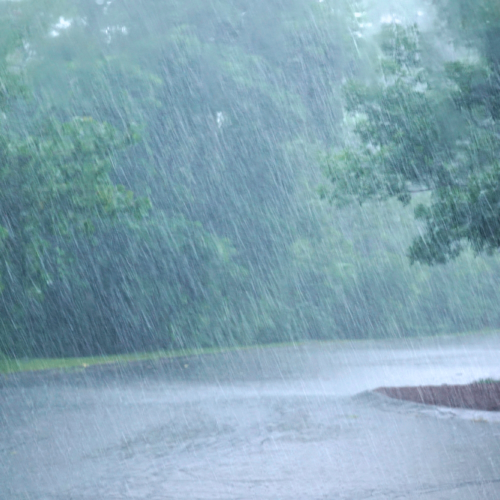 How to Drive Safely in Strong Wind and Rain [Video]