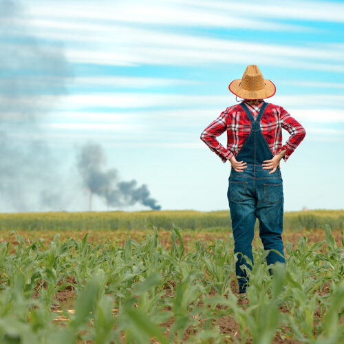 Farmers Urged to Reevaluate Insurance Coverage